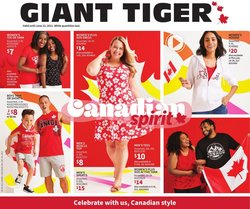 Giant Tiger catalogue ( 6 days left)