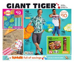 Giant Tiger catalogue ( 3 days left)