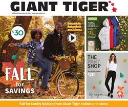 Giant Tiger catalogue ( 11 days left)