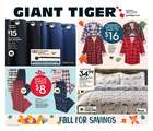 Giant Tiger catalogue ( Expires today )