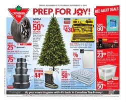 Garden & DIY offers in the Canadian Tire catalogue in Newcastle