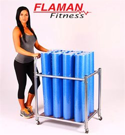 Flaman Fitness catalogue ( Expired )