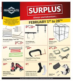 Cars, motorcycles & spares offers in the Princess Auto catalogue in Winnipeg