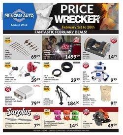 Princess Auto catalogue ( Expired )
