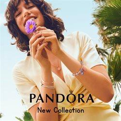 Pandora catalogue ( 19 days left )
