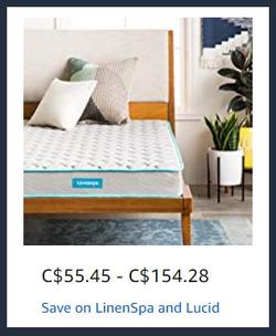 Amazon deals in the Toronto flyer