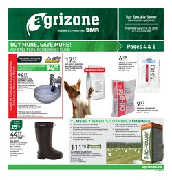 Garden & DIY offers in the BMR catalogue in Montreal ( Expires tomorrow )