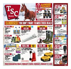 Garden & DIY offers in the TSC Stores catalogue in Milton ( 3 days ago )
