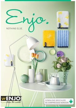 ENJO deals in the Toronto flyer