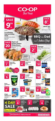 Calgary Co-op deals in the Calgary flyer