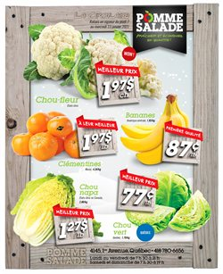 Pomme Salade catalogue ( Expired )