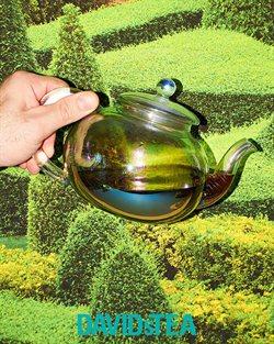Davids Tea catalogue ( Expired )