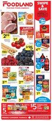 Foodland catalogue ( Expires tomorrow)