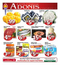 Marché Adonis deals in the Toronto flyer