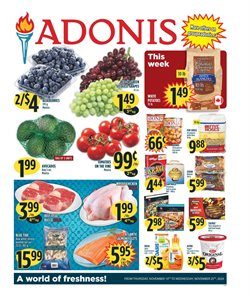 Marché Adonis catalogue ( Expires today )