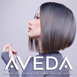 Pharmacy & Beauty offers in the Aveda catalogue in Hamilton