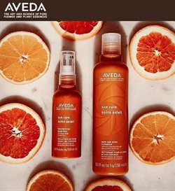 Pharmacy & Beauty offers in the Aveda catalogue in Chilliwack ( 20 days left )