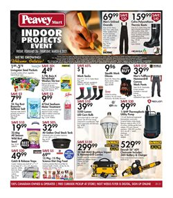 Peavey Mart catalogue ( 3 days left )